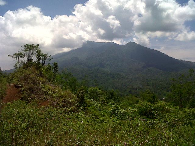 """Bukit Cikeusik Kampung Wisata Lebak Bitung di Desa Curuglemo tempat melihat """"Sunrise """" yang muncul dari balik Gunung Karang"""